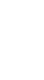 R Grande MCS Logo Blanco